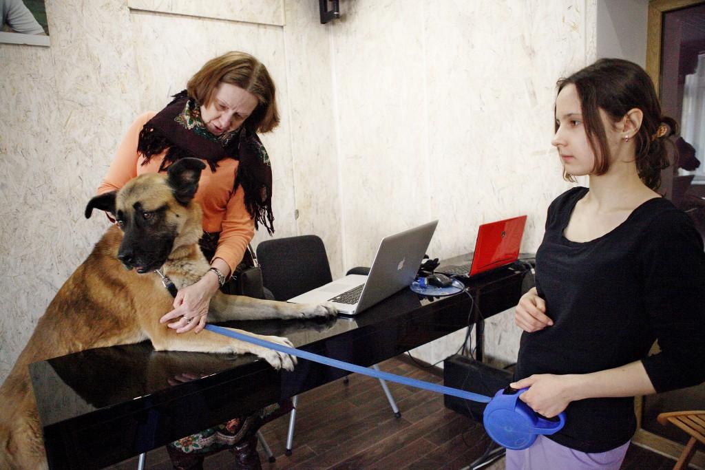 Московские приюты ожидает массовая проверка