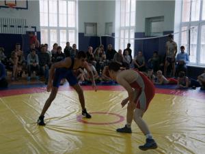 Соревнования по вольной борьбе проведут в 17 весовых категориях. Фото: сайт Сосенского центра спорта