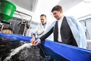 Поставки импортной рыбы и морепродуктов в столицу сократились на 40 процентов