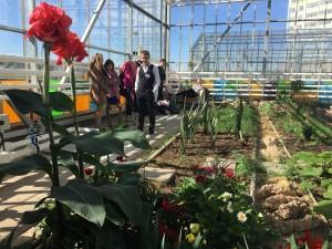 Весеннее цветение: школьная оранжерея в Новых Ватутинках откроет двери для гостей