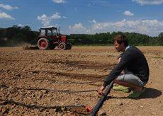 Фермер Павел Таран экспериментирует над капустой