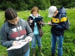 Школьники Московского побывали в роли экологов. Фото предоставили представители школы № 2065