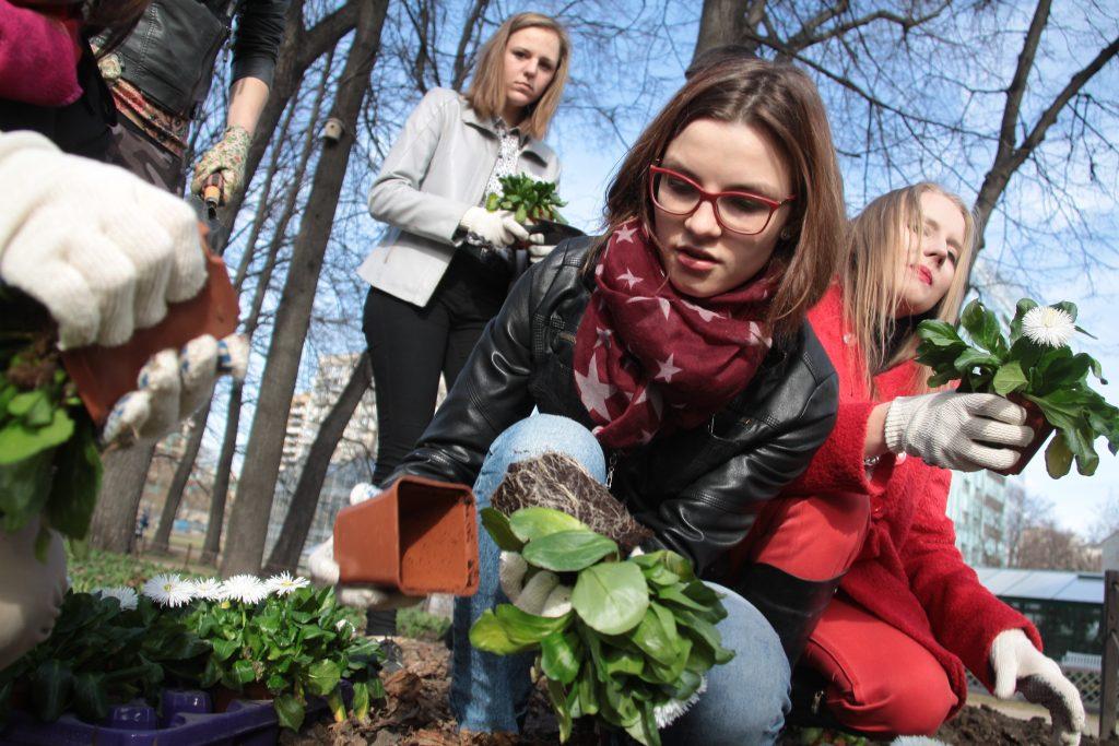 Сервис по обмену домашними растениями появился на юго-западе Москвы