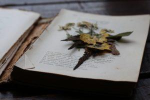 Валентина Кожевникова посвятила стихотворение родному поселку Коммунарка. Фото: Елена Олесик.