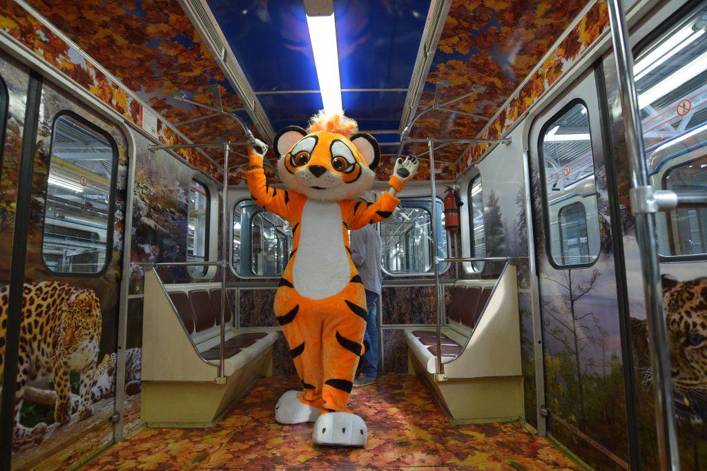 Новый «Полосатый экспресс» запускают на серой ветке метро