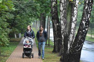 В парке «Сокольники» появились специальные дорожки — на них написано количество калорий, которые сжигаются при прогулке.