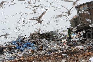 "Фото: Сергей Ермохин/РИА ""Новости"""