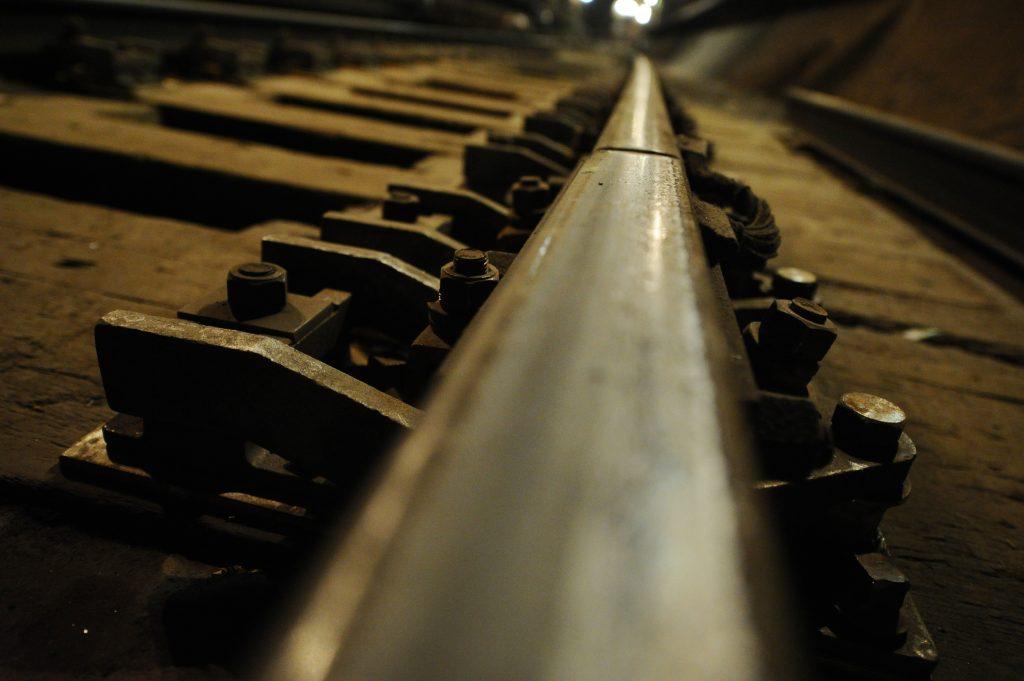 Движение серой ветки метро возобновилось после падения пассажира на рельсы
