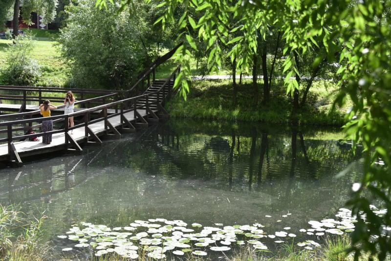 В Новой Москве появится парк для фотоохоты