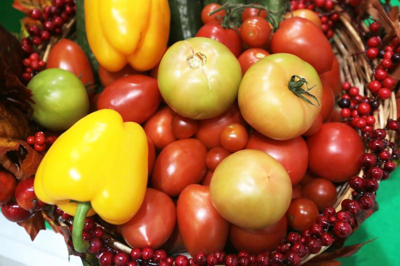 Конкурс газеты «Новые округа»: «Летний урожай»