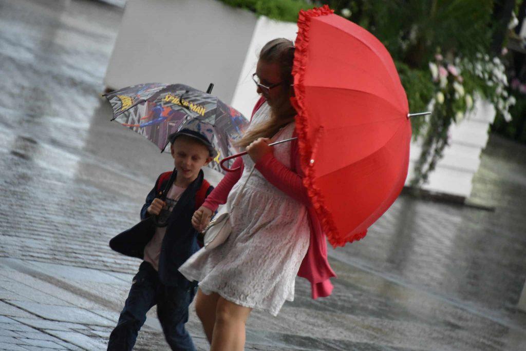 МЧС предупредило москвичей о сильной грозе 30 августа