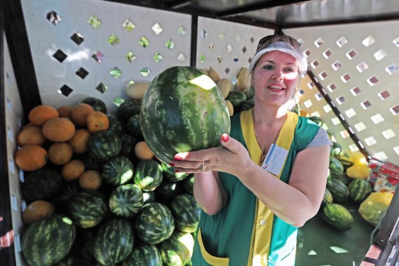 В Москве начались продажи дынь и арбузов