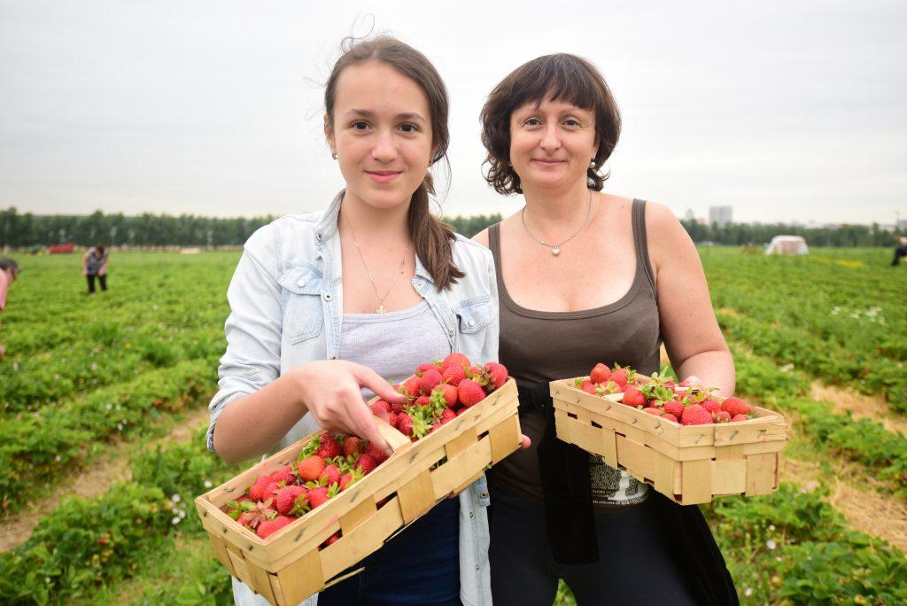 Фотоконкурс «Летний урожай» завершится через две недели