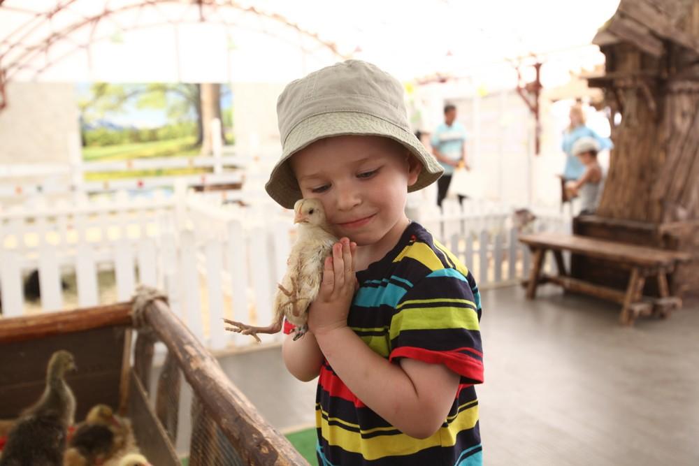 Московский зоопарк проведет детские квесты и интеллектуальные игры