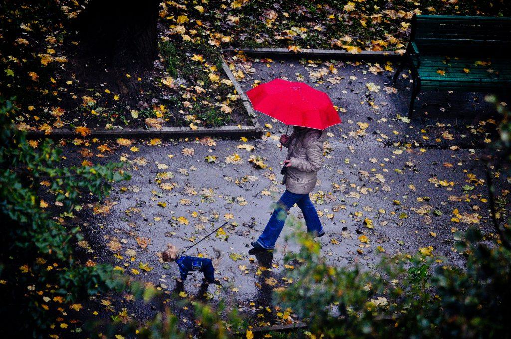 Оранжевый уровень опасности ввели в Москве из-за погоды