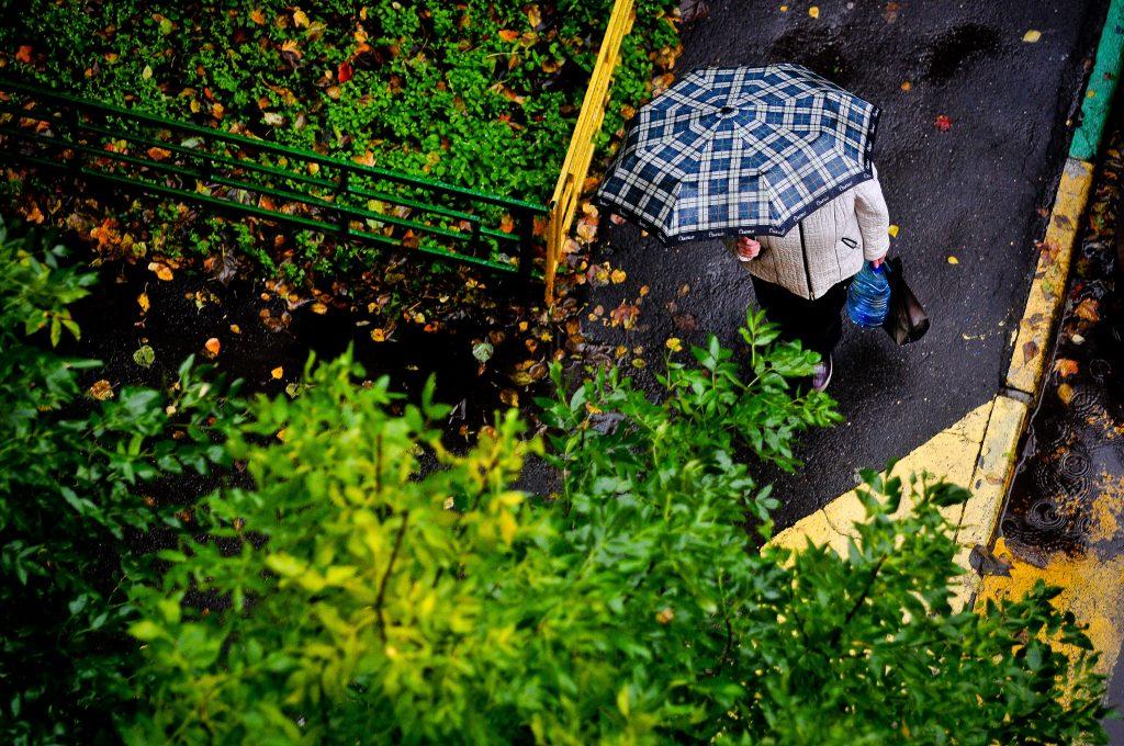 Погода на вторник: падение температуры и небольшой дождь