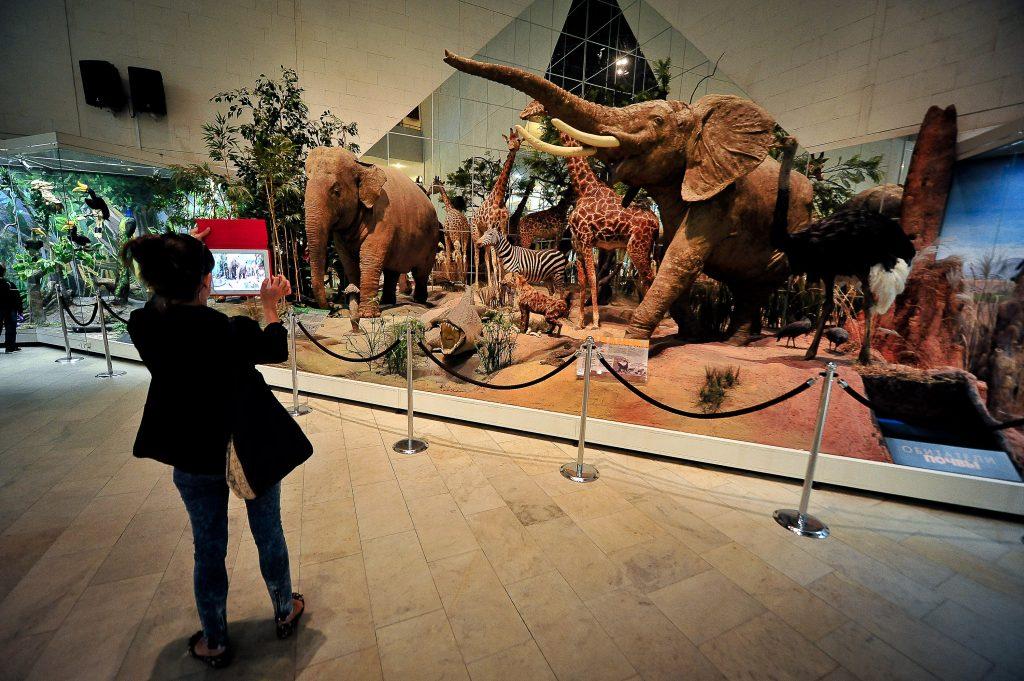 В День города для москвичей бесплатно откроют 88 музеев