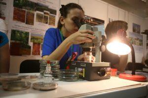 Ученых позвали на образовательный семинар в Троицке. Фото: архив, «Вечерняя Москва»