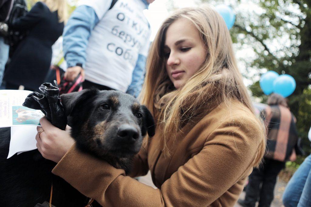 Читатели ватитунской библиотеки пообщаются с собаками из приютов
