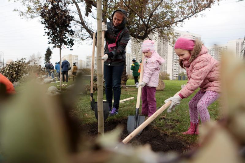 Волонтеры вместе с детьми филимонковского интерната высадят деревья