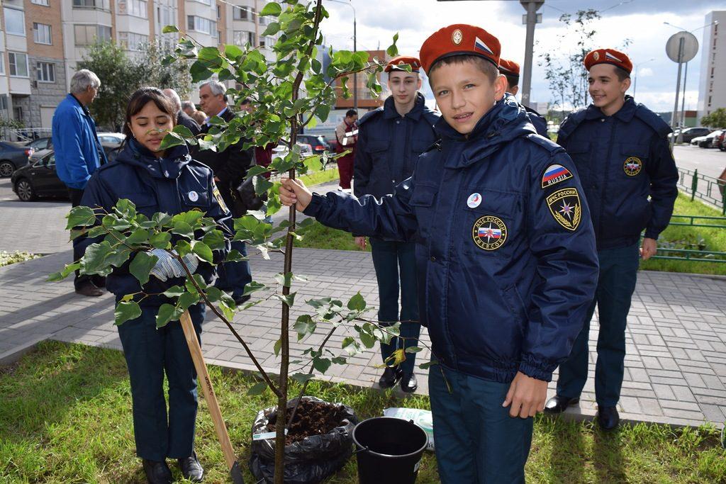 В Московском заложили аллею в честь дня рождения Метростроя