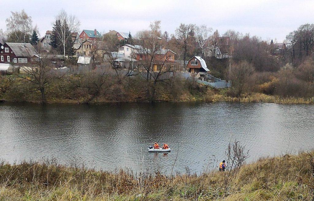 В поселении Рязановское прошла операция по спасению лебедя