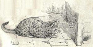 """""""Рисунок Кошки"""", Вальтер Хьюбах. Фотоархив Wikipedia""""Рисунок Кошки"""", Вальтер Хьюбах. Фотоархив Wikipedia"""