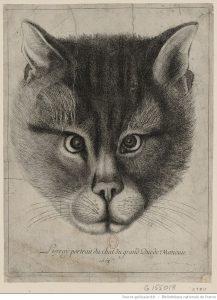 """""""Подлинный портрет кота великого князя Московии"""", 1663. Фотоархив Wikipedia"""