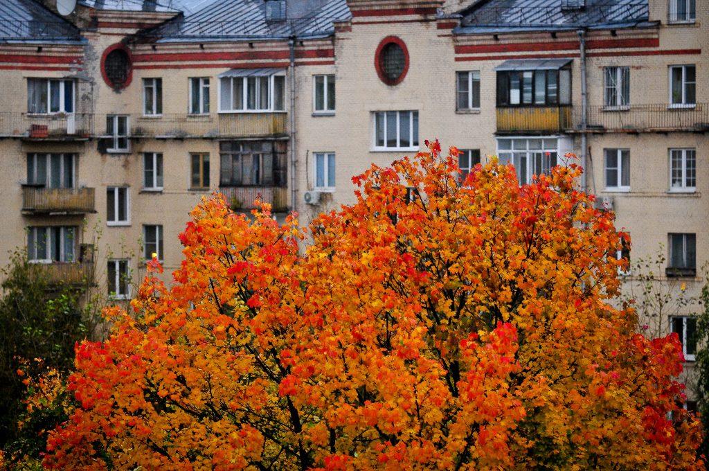 Вторник принесет в Москву похолодание