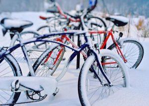 Велосипедные дорожки могут появиться на Калужском шоссе. Фото: pixabay.com