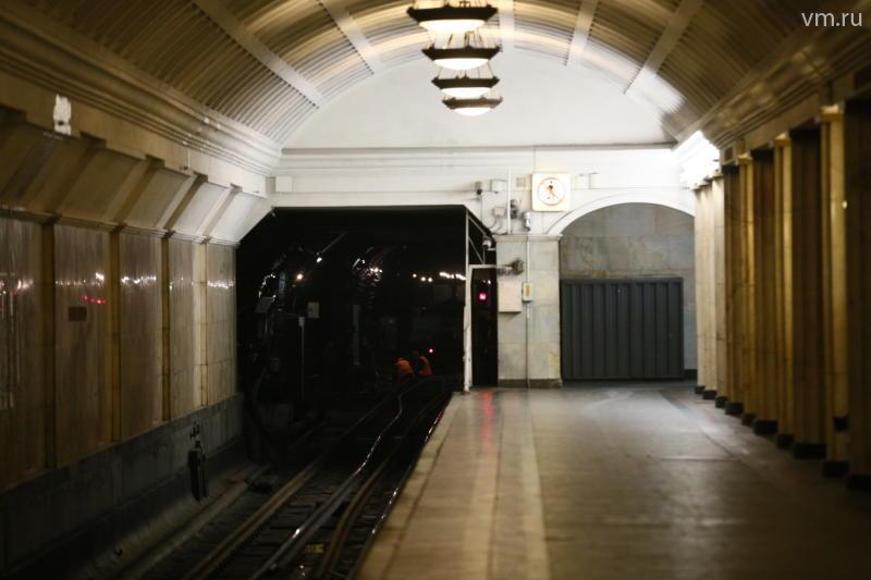 Поезд Московского метро сбил пенсионерку зеркалом
