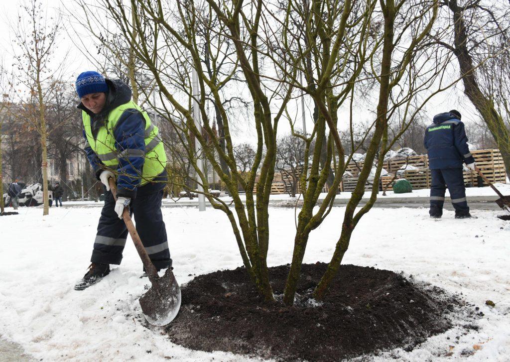 Парк в поселении Щаповское планируют благоустроить к концу лета