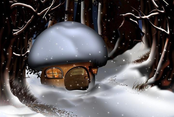За ...грибами в зимний лес