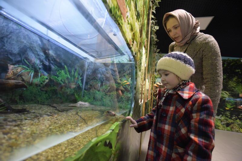 С 1 апреля Московский зоопарк перейдет на летний режим работы