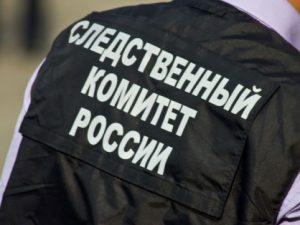 СК РФ проводит проверку после смерти мужчины под колесами «Ласточки» на юго-западе Москвы