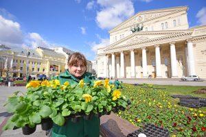 Свыше десяти миллионов цветов высадят в Москве