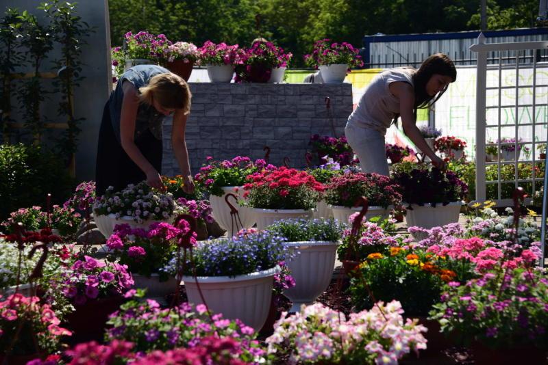 Бетонные цветочницы появятся в поселении Десеновское
