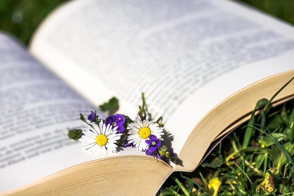 Библиотеки Новой Москвы устроят мастер-классы в честь Дня славянской письменности