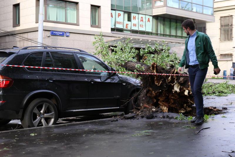 Семьям погибших во время урагана в Москве выплатят компенсацию