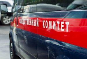 Следователи проверяют информацию об избиении школьницы в Москве
