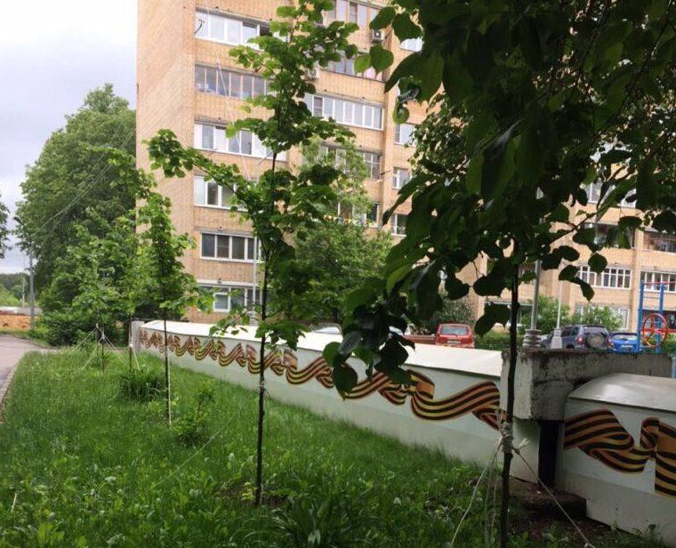 Новые деревья появились около парка 70-летия Победы в Великой Отечественной войне. Фото: администрация поселения Десеновское