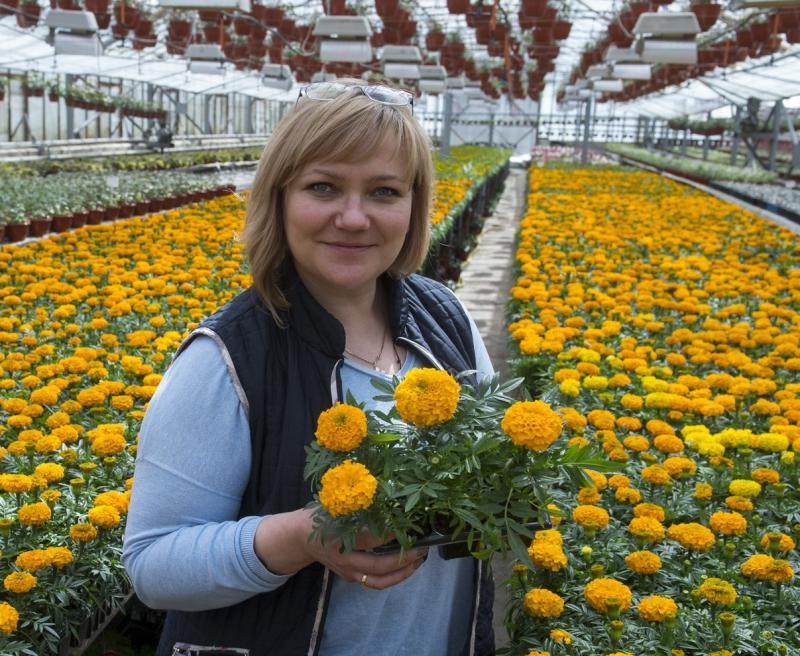 Новые округа примут участие в конкурсе на фестивале «Московское лето»