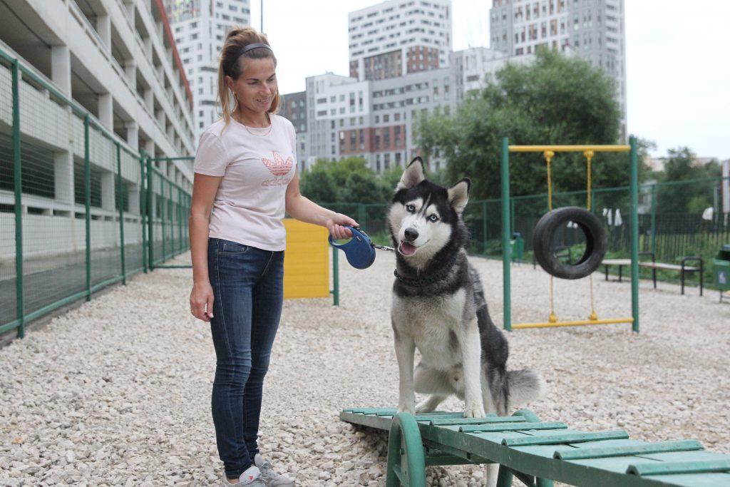 Коммунарка. Собачья площадка. Фото: Владимир Смоляков