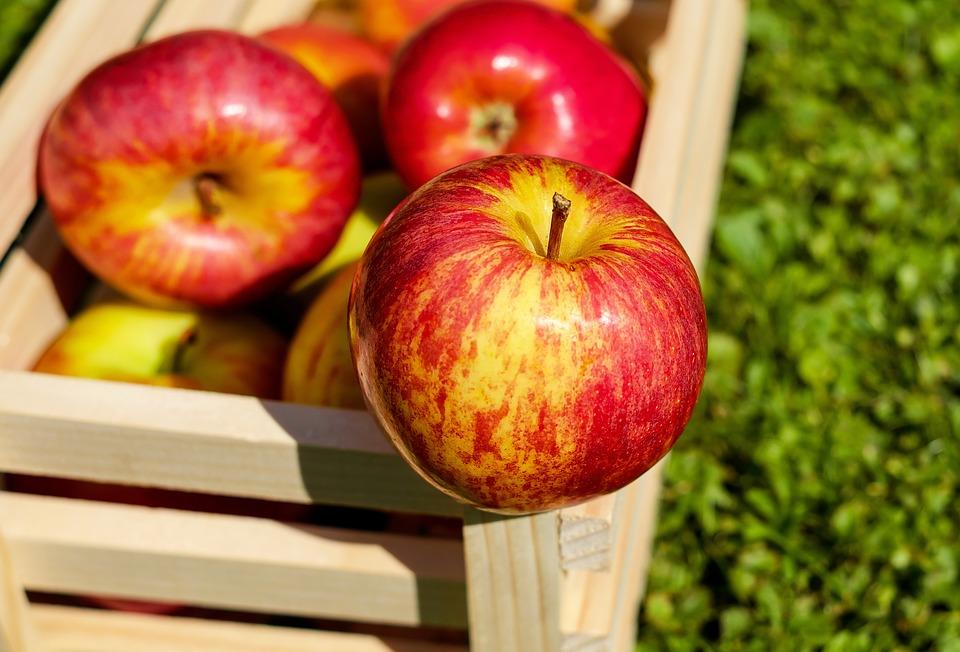 Жители Филимонковского отпразднуют Яблочный спас. Фото: сайт Pixabay