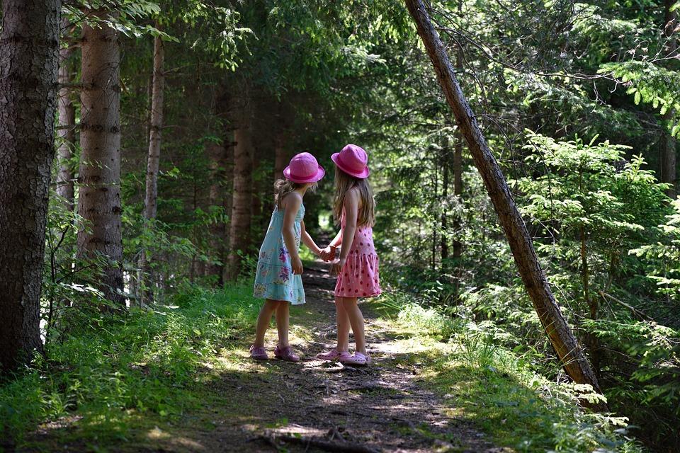 Юные путешественники поселения Краснопахорское отправятся в лес