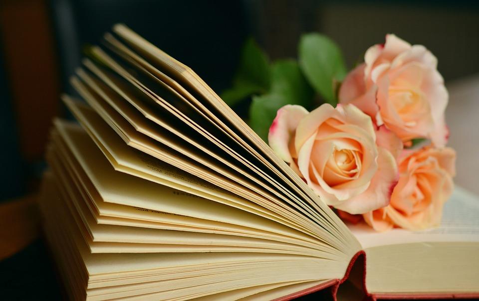 Книжную выставку откроют в Троицке. Фото: pixabay.com