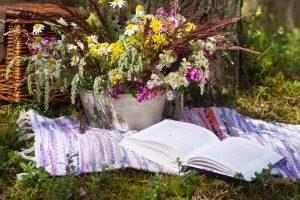 Летние чтения проведут в Вороновском. Фото: pixabay.com
