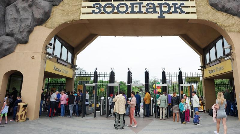 В Московском зоопарке рассказали о состоянии животных в жаркие дни лета
