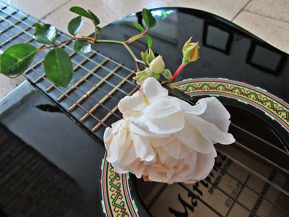 Музыкально-поэтическое прощание с летом пройдет во Внуковском
