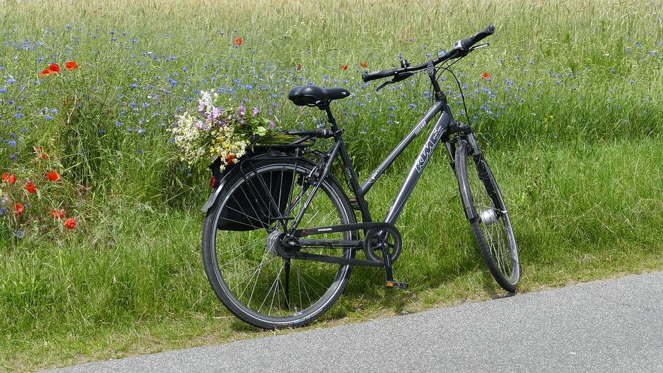 Протяженность велодорожек в Новой Москве составит 35 километров к 2025 году